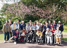 桜見学(八重岳桜祭り)
